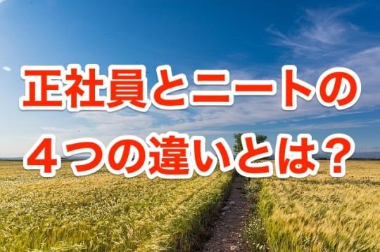 wheat-1390016_640